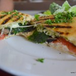 Inside view of panini (fresh mozzarella cheese, pesto, and VR tomatoes)