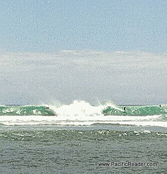 Holy F***ing South Swell!